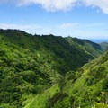 Looking back into Palolo Valley from the crater rim.- Ka'au Crater Hike