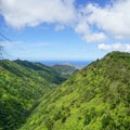 Looking toward Diamond Head and Honolulu.- Ka'au Crater Hike