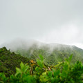 The wind and clouds can change summit conditions quickly.- Ka'au Crater Hike