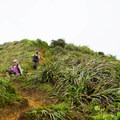 Descending from the summit is slippery and steep. Poles and spikes can help!- Ka'au Crater Hike
