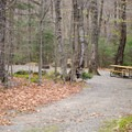 A typical site at Lafayette Place Campground.- Lafayette Place Campground