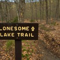 The start of the Lonesome Lake Trail.- Lafayette Place Campground