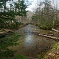 The Pemigewassett River.- Lafayette Place Campground