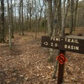 The Pemi Trail cuts through the campground.- Lafayette Place Campground