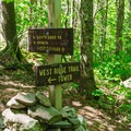 The first junction along the trail.- Cardigan Mountain State Park