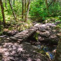A bridge on the West Ridge Trail.- Cardigan Mountain State Park
