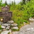 A trail junction on the ridge.- Cardigan Mountain State Park
