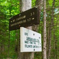 The junction with the Carrigain Notch Trail.- Mount Carrigain via Signal Ridge