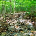A water crossing beyond the junction.- Mount Carrigain via Signal Ridge