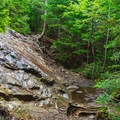 The trail climbs up this rock and continues in the woods.- Mount Carrigain via Signal Ridge
