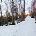 The snowy trail during sunset.- Thunderbird Falls
