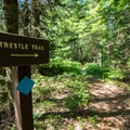 Access point to the Trestle Trail from the campground.- Sugarloaf 2 Campground
