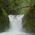 Dropping into the falls on Upper Yellowjacket Creek.- Upper Yellowjacket Creek