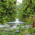 The run is full of scenery to enjoy along with the rapids.- Upper Yellowjacket Creek