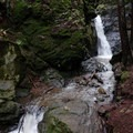 Cascade Falls.- Mill Valley's Old Mill Park and the Dipsea Steps