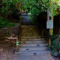 Dipsea Steps Trailhead.- Mill Valley's Old Mill Park and the Dipsea Steps