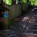 Peace sign on the Dipsea Steps.- Mill Valley's Old Mill Park and the Dipsea Steps