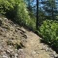 Horseshoe Ridge Trail.- Zig Zag Mountain via the Horseshoe Ridge Trail