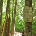 Start of the Mount Hood Wilderness.- Zig Zag Mountain via the Horseshoe Ridge Trail