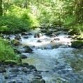Lost Creek.- Zig Zag Mountain via the Horseshoe Ridge Trail