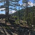 Views start to open up as the trail ascends toward Boulder Lake.- Boulder Lake