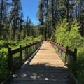 Boardwalk over a marsh.- Ponderosa State Park