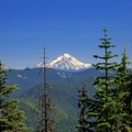View of Mount Jefferson from the true summit shoulder of Henline Mountain.- Henline Mountain