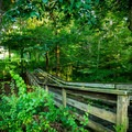 A bridge through the educational nature trail.- Foothills Equestrian and Nature Center (F.E.N.C.E.)