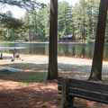 Benches set back among the trees.- Schreeder Pond