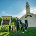 Dog Chapel, a very welcoming place.- Dog Mountain + Dog Chapel