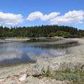 Esquimalt Lagoon Migratory Bird Sanctuary.- Esquimalt Lagoon Migratory Bird Sanctuary