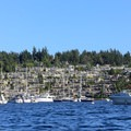 Housing on the hillside overlooking Brentwood Bay.- Brentwood Bay