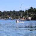 Stand-up paddleboard yoga in Brentwood Bay.- Brentwood Bay