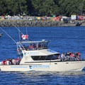 A whale-watching boat leaving from Victoria Harbour.- Victoria Harbour