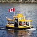 Water taxi in Victoria Harbour.- Victoria Harbour