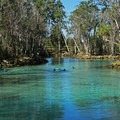 Spring colors at Three Sisters.- Three Sisters Springs