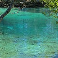 Beautiful color at Three Sisters Spring.- Three Sisters Springs