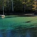 Swimming dock at Morrison Springs.- Morrison Springs