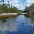 Blackwater River.- Blackwater River State Park
