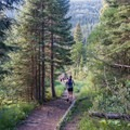 Much of the trail is runnable.- Forest Lakes + Needle Eye Tunnel