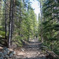 The trail is very rocky, so watch your footing.- Forest Lakes + Needle Eye Tunnel