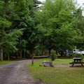 View of the campground from near the entrance.- Wilmington Notch Campground