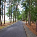 Road that runs parallel to the bay, with campsites to the right.- Jane's Island State Park Campground