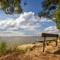 A bench looking out over the water.- Roaring Point