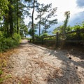 A secondary pathway to the beach.- Roaring Point