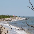 A view of the beach.- Jane's Island State Park