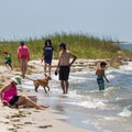 People and their pets play in the surf.- Jane's Island State Park