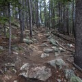 This will be your view for much of the hike once you switchback through open meadows.- Deer Mountain