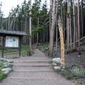 A look up from the Bierstadt Lake Trailhead.- Bierstadt Lake Loop