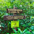 A side trail leads to Little Monadnock Mountain.- Rhododendron State Park